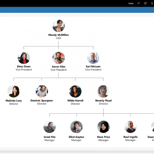 Dynamics 365 for Sales Live Org Chart